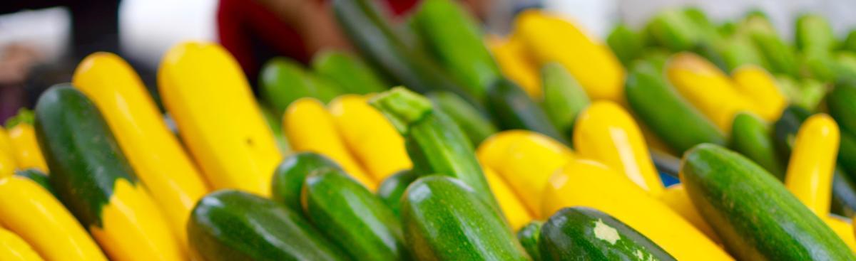 Recipe of the Week - Cheesy Zucchini Fritters