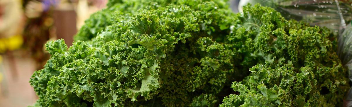 Recipe of the Week - Sesame Noodles with Kale & Mushrooms