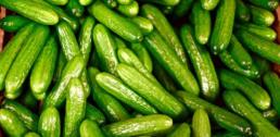 Recipe of the Week - Cucumber Sesame Salad