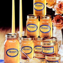 Gentle Breeze Honey, Inc.