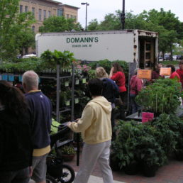 Domann's Plants LLC
