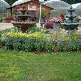 Twin Creeks Nursery & Greenhouses Inc