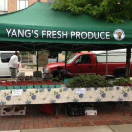 Yang's Fresh Produce