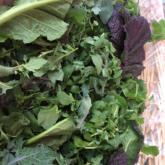 5 Ways to Rock Those Salad Greens (that do not involve salad!)