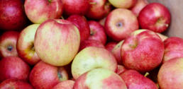Recipe of the Week - Apple & Beet Chutney