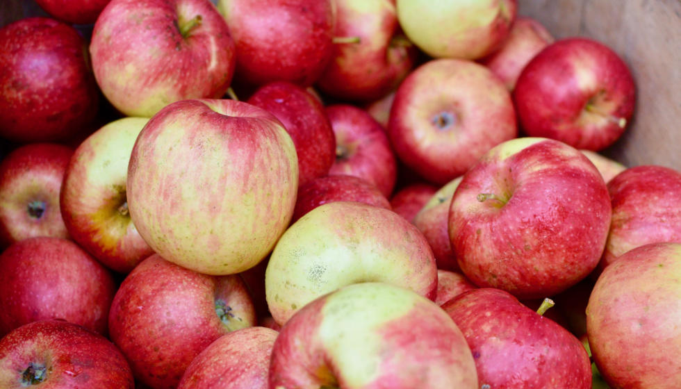 Dick and Vivian Green of Pleasant Springs Orchard