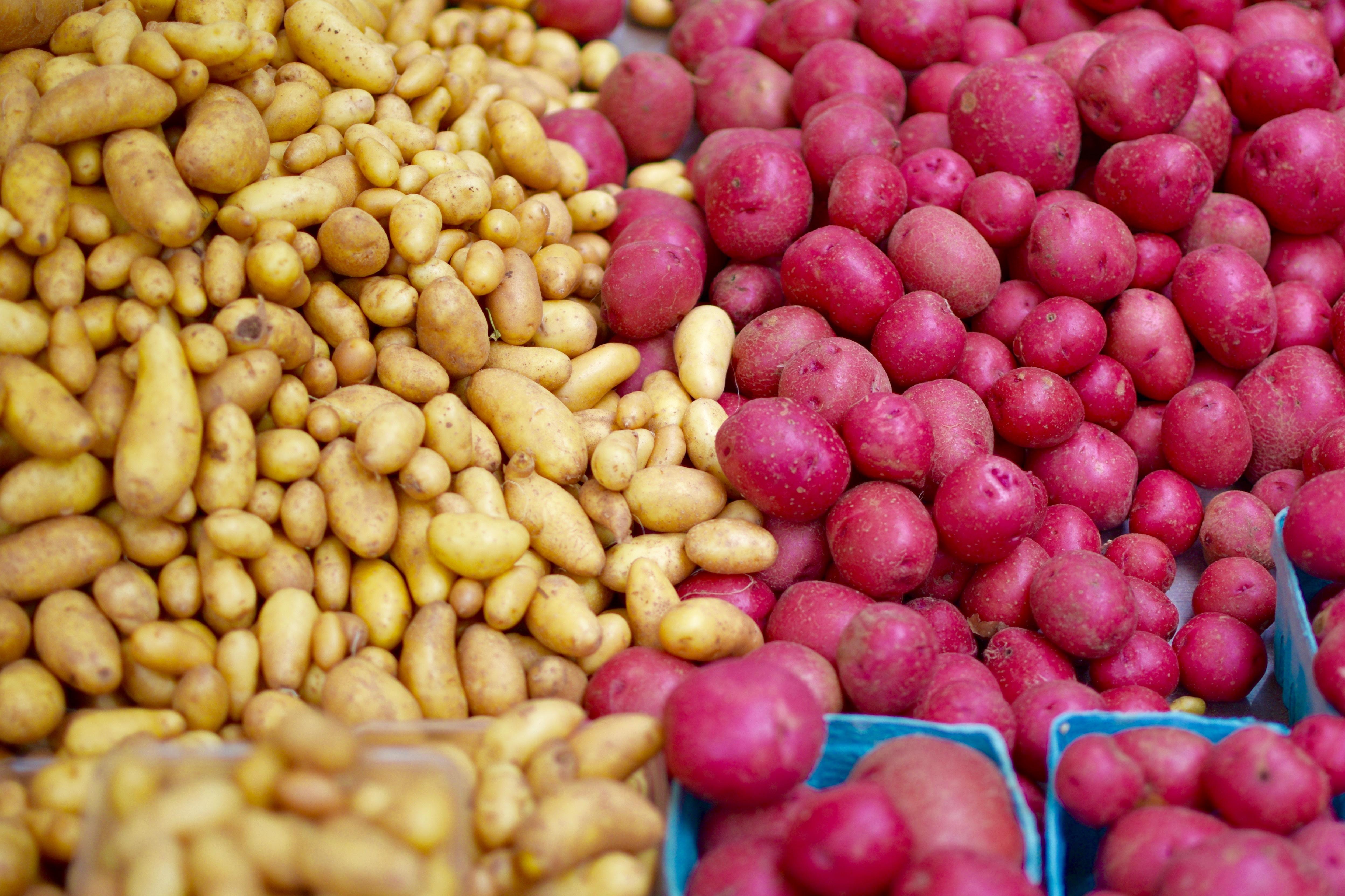 potatoes_outdoor-6.jpg#asset:2184