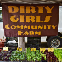 Dirty Girls Farm